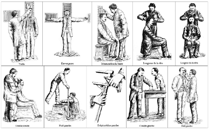 Fig 213 Illustration of Bertillons anthropometric measurements adapted from 12