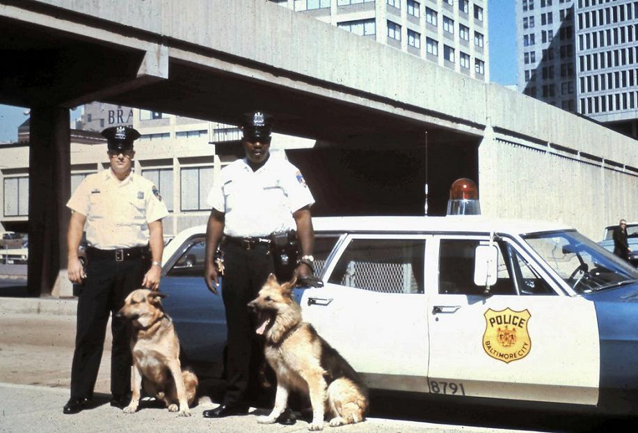 Two Officers and Dogs