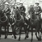 The Mounted Unit